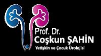 Logo Coskunsticky